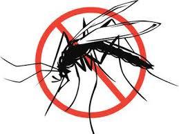 malaria stop