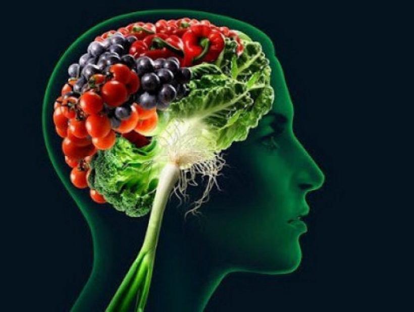 nutrition_brain-e1382410453772