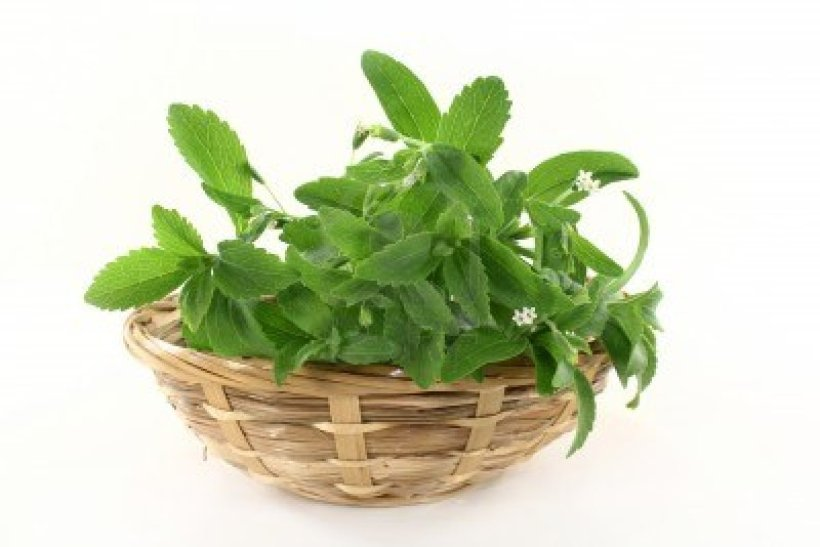 #Safe #Stevia
