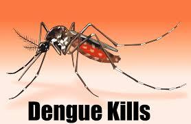 #DengueAlert