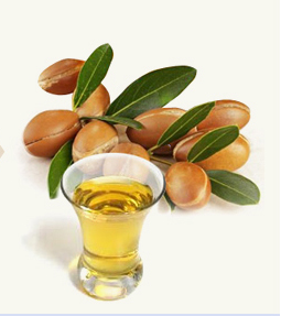 ARGAN AYURVEDIC OIL