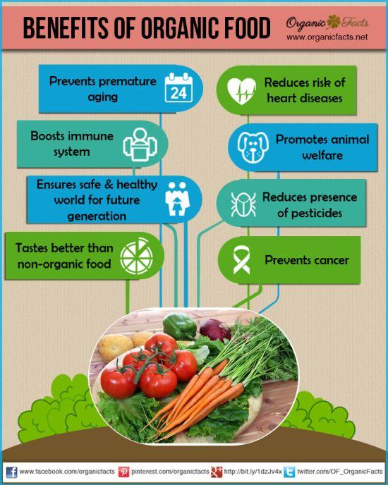 organic food1