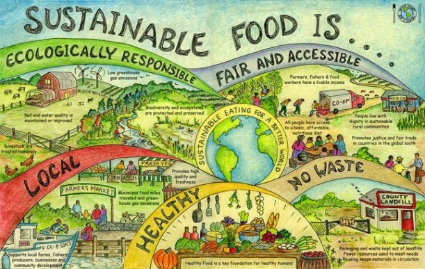 Which Country Has Most Organic Food