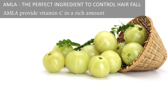 amla-the-perfect-ingredient-to-control-hair-fall