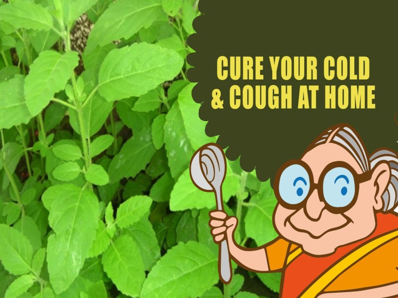 The Best Natural Cold and Cough Remedies
