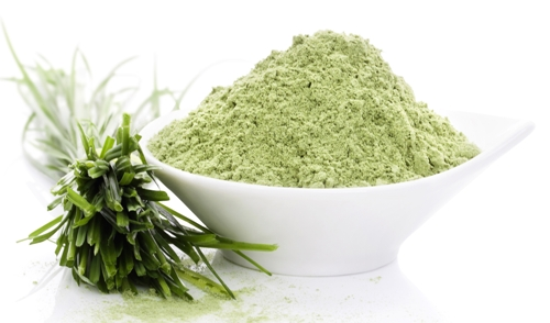 Wheatgrass-powder