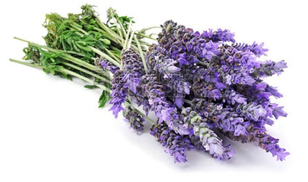 Lavender-bunch