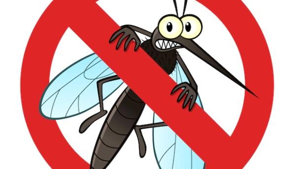 mosquito repellent1