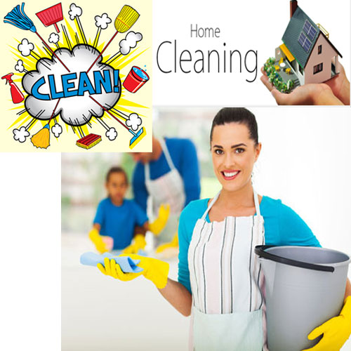 get-5-smart-tips-to-clean-and-healthy-home-1-1372-aps-home2