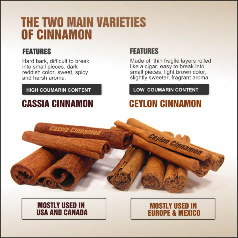 types_of_cinnamon_1