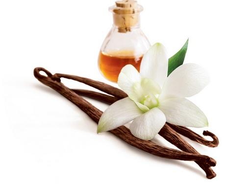 vanillia-oils