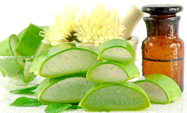 aloe-vera-benefits-for-hair-1