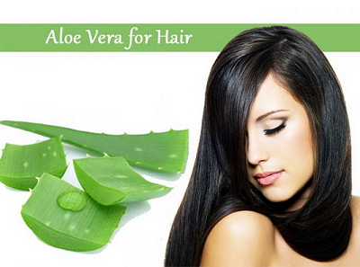benefits-of-aloe-vera-for-hair
